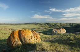 Glacial erratics (solitary boulders), Grasslands National Park