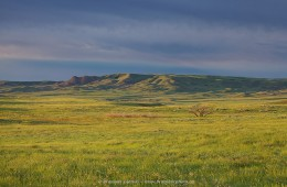 Three Sisters Butte at sunrise, Grasslands National Park