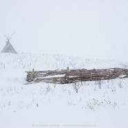 Buffalo pound in snow storm, Wanuskewin Park