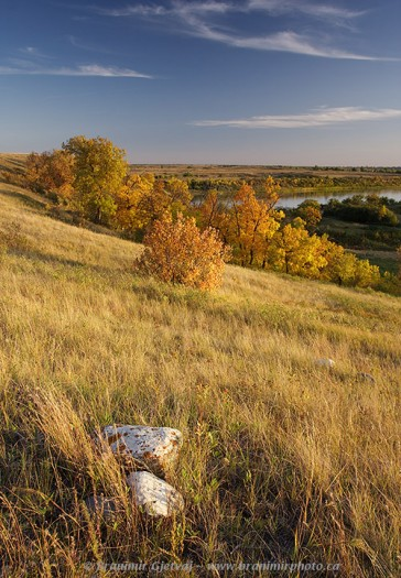 Fall colours along South Saskatchewan River at Wanuskewin Park