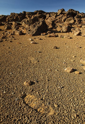 There is life on Mars - a footprint in sand