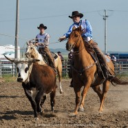 Maple Creek Ranch Rodeo