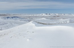 Winter in Grasslands National Park