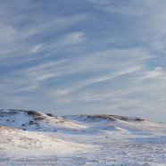 Winter on the prairies – Grasslands National Park