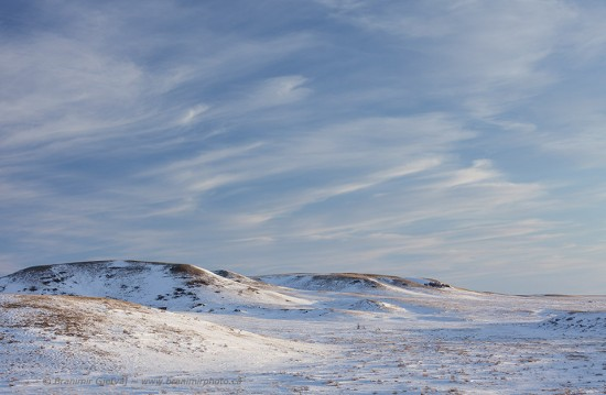 Winter in Grasslands National Park (West Block)