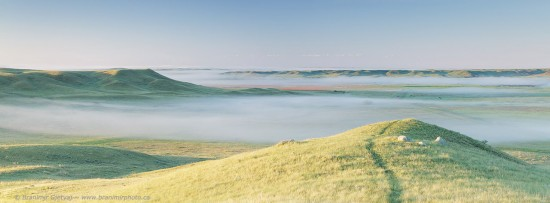 Early morning fog in Frenchman River valley, Grasslands National Park