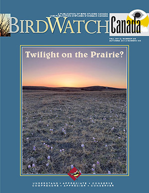 Front cover of the BirdWatch Canada magazine