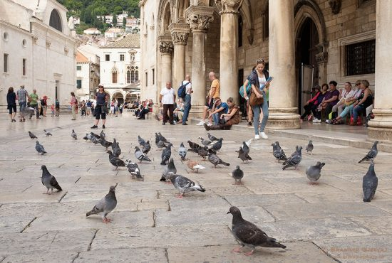 In front of Rector's Palace. Dubrovnik, CRoatia