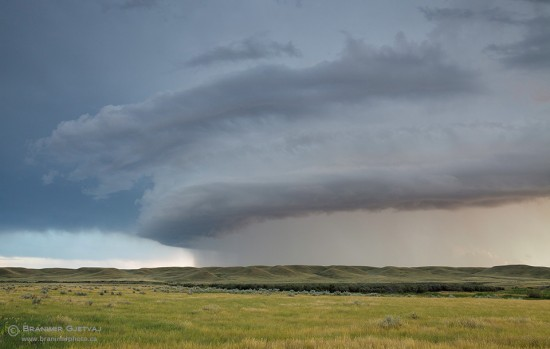 Dramatic shelf cloud formation on the leading edge of a rain storm passing through the Grasslands National Park