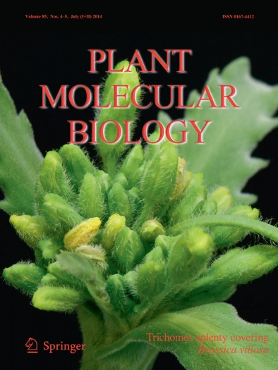 Front cover of the scientific journal Plant Molecular Biology, July 2014 issue