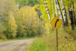 Traffic sign along the Narrows Road at peak of autumn colours. Prince Albert National Park, Saskatchewan