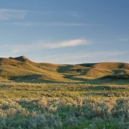 Grasslands on Canada's top 10 endangered places list