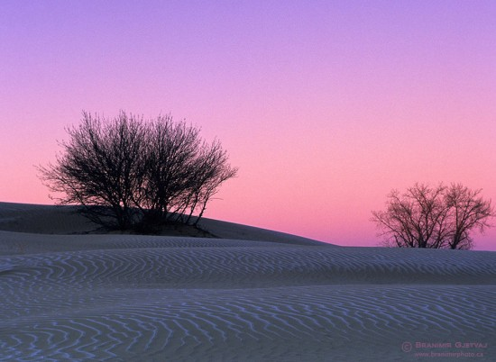Sunrise in Great Sand Hills, Saskatchewan