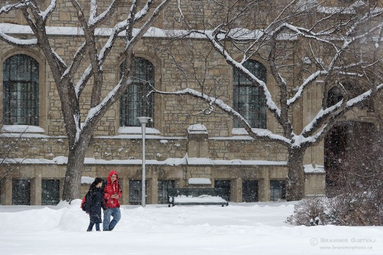 Students walk along the Bowl (University of Saskatchewan) during a snow storm.