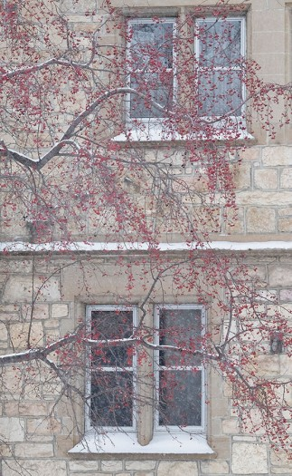 Detail of a building at the University of Saskatchewan campus during a snow storm.