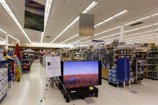 World Photography Day image display at London Drugs store in Saskatoon