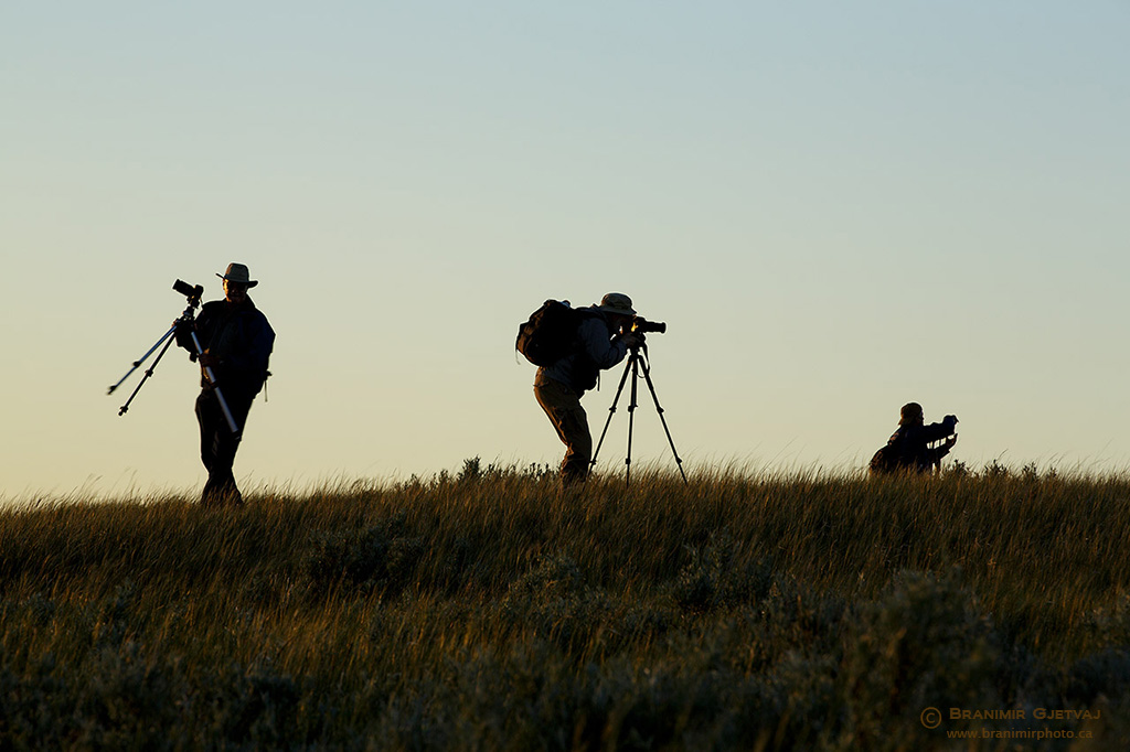 Participants in the Grasslands National Park photography workshop