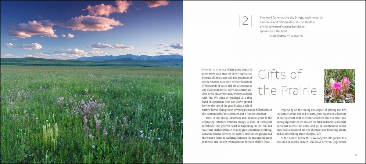 Islands of Grass book; text by Trevor Herriot, photographs by Branimir Gjetvaj