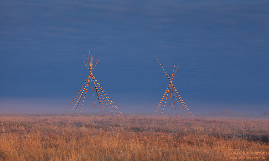 Teepee frames in early morning fog. Wanuskewin Heritage Park, Saskatoon