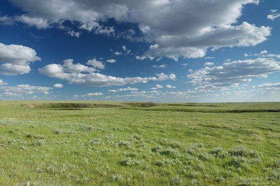 Prairie at Battle Creek community pasture. Consul, Saskatchewan