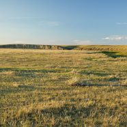 Three large community pastures in SW Saskatchewan closer to protection