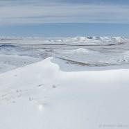 Winter in Grasslands National Park