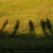 Landscape Photography Workshop a success