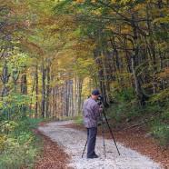 Digital photography course starts next week